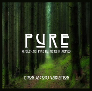 Pure (Set Fire to the Rain Remix) - Artwork